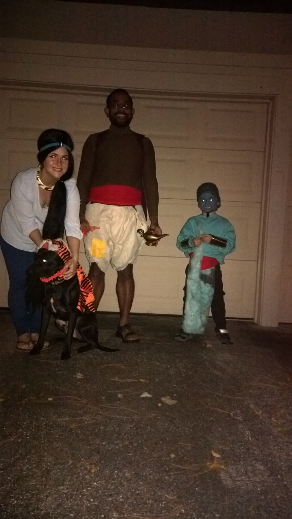 aladdin family costumes