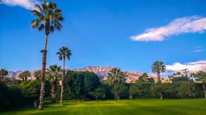 Parker Palm Springs-15