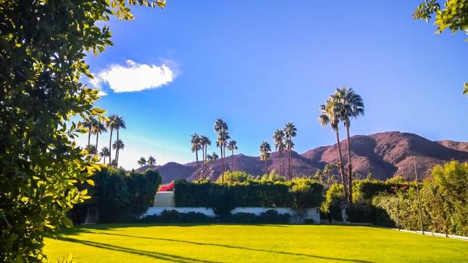 Parker Palm Springs-6