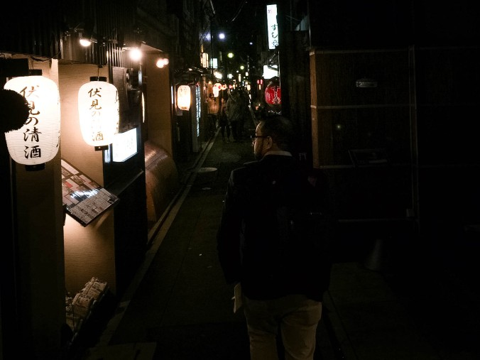 Arashiyama and Castle Kyoto (213 of 14)