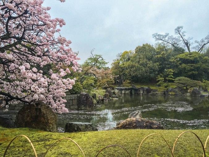 Arashiyama and Nijo Castle Kyoto (206 of 14)