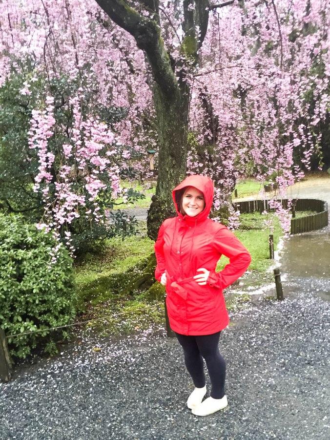 Arashiyama and Nijo Castle Kyoto (210 of 14)