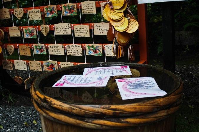 Arashiyama Monkeys and Bamboo Forest Kyoto (11 of 34)