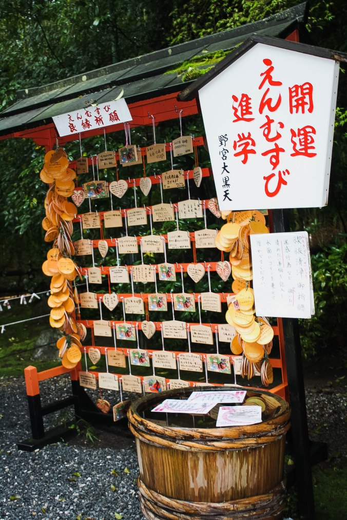 Arashiyama Monkeys and Bamboo Forest Kyoto (12 of 34)