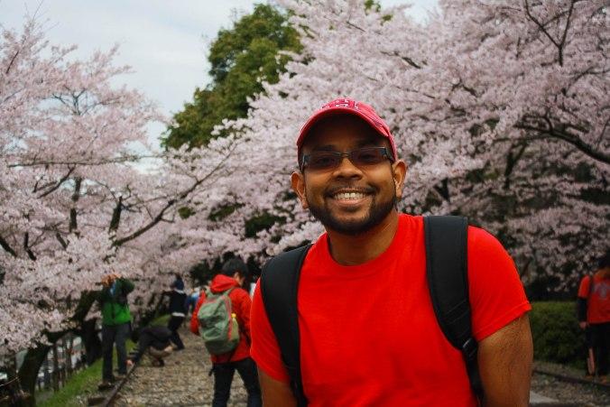 cherry blossom season kyoto Mark
