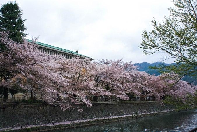 Kaiseki-ryori (2 of 14)