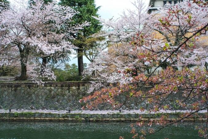 Kaiseki-ryori (4 of 14)