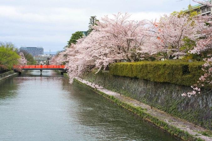 Kaiseki-ryori (5 of 14)