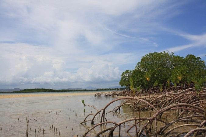 Puerto Princessa Underground River and Palawan Honda Bay Island Hopping (15 of 37)