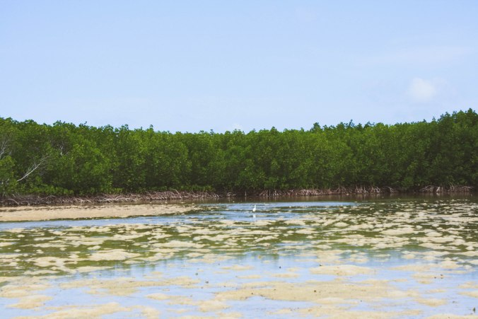 Puerto Princessa Underground River and Palawan Honda Bay Island Hopping (7 of 37)