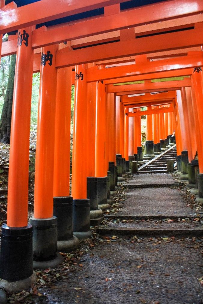 Shinto God of Rice, Tea Ceremony, Traditonal Japanese meal (16 of 35)