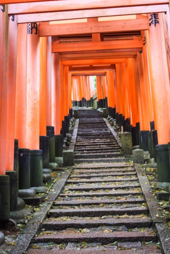 Shinto God of Rice, Tea Ceremony, Traditonal Japanese meal (19 of 35)