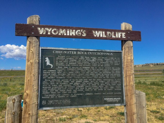 Wyoming Wildlife