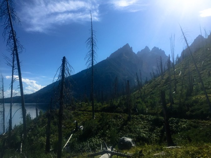 Hiking Jenny Lake in Grand Teton NP-3