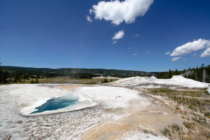 Geothermal Features in Yellowstone National Park: Springs