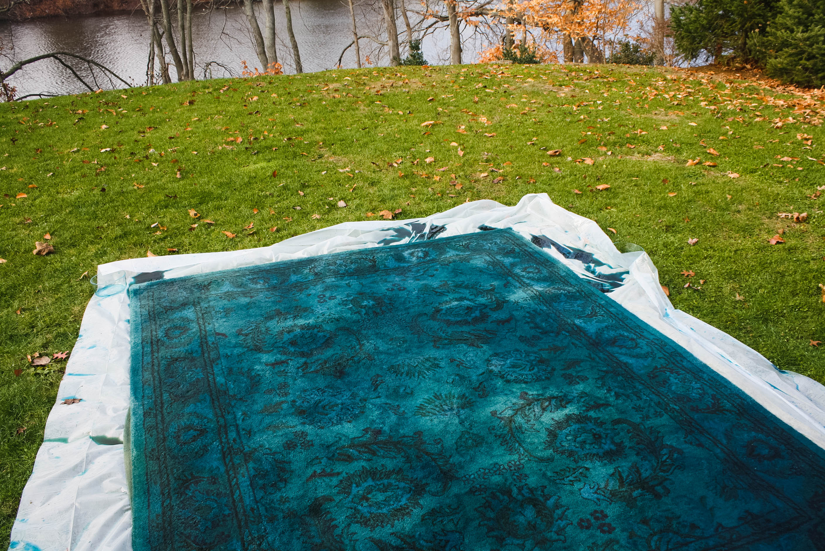 Overdyed Rug With RIT Fabric Dye DIY 19