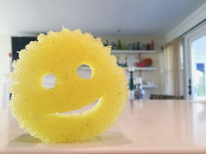 Scrub Daddy. You need one now.