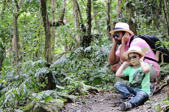 Father and son birdwatching in El Yunque National Forest Rainforest in Puerto Rico