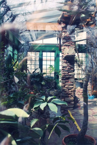 Life goal: have a home with an atrium.