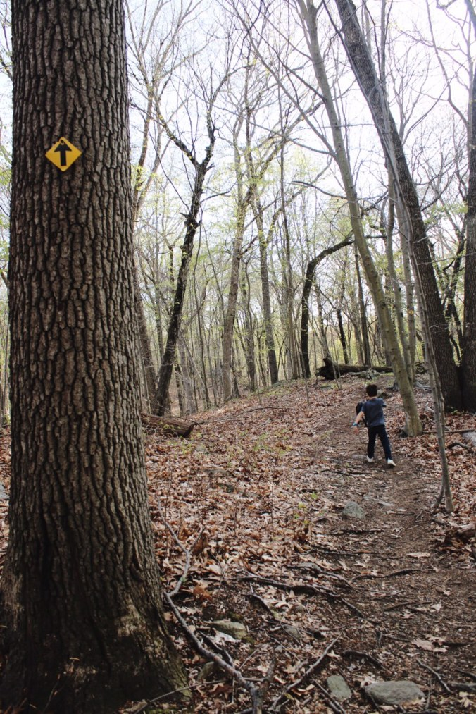 Hiking near Westport Town of Fairfield Mill Hill Open Space April 30