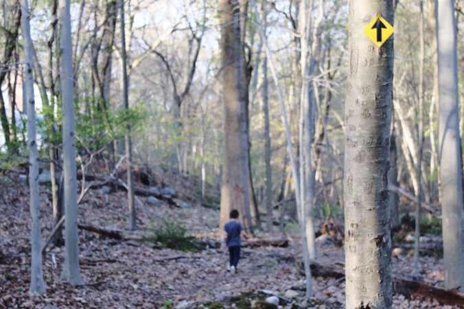 Hiking with kids near Westport and Fairfield CT
