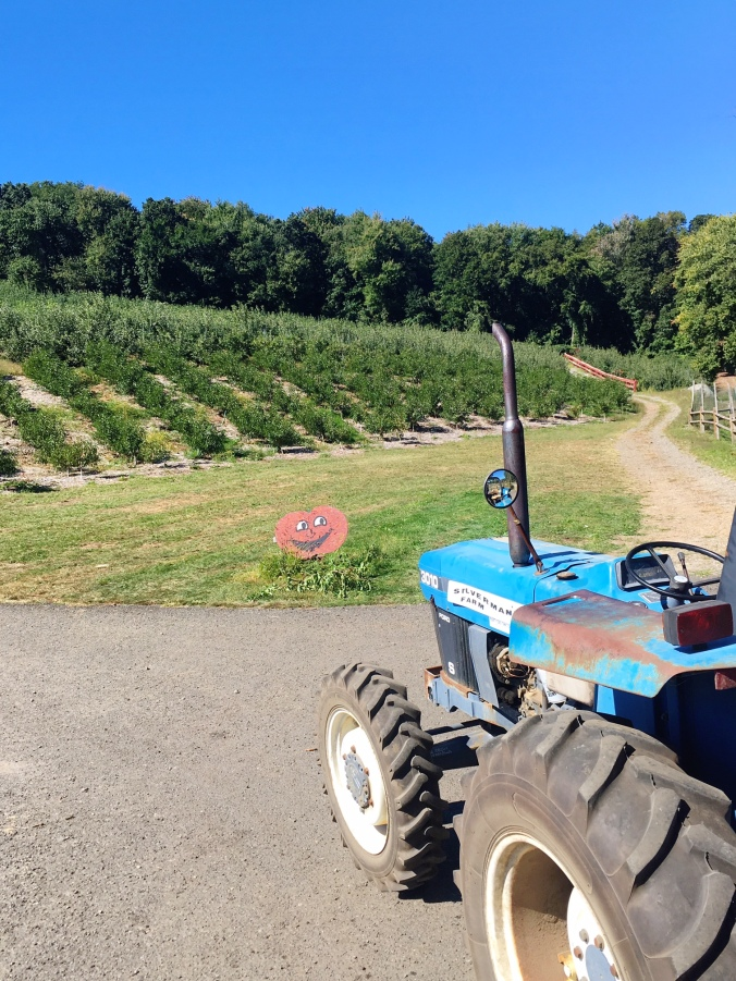 riding-a-tractor-to-go-apple-picking-in-fairifield-county-connecticut