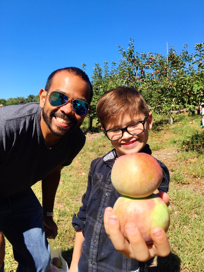 two-apples-stuck-together-apple-picking-in-new-england-autumn-fall