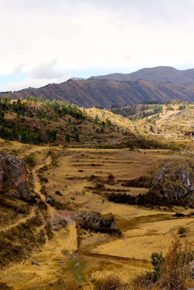 one-day-in-cusco-itinerary-horseback-to-sacsaywaman-alpacas-street-food-35