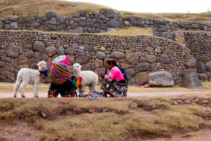 one-day-in-cusco-itinerary-horseback-to-sacsaywaman-alpacas-street-food-41