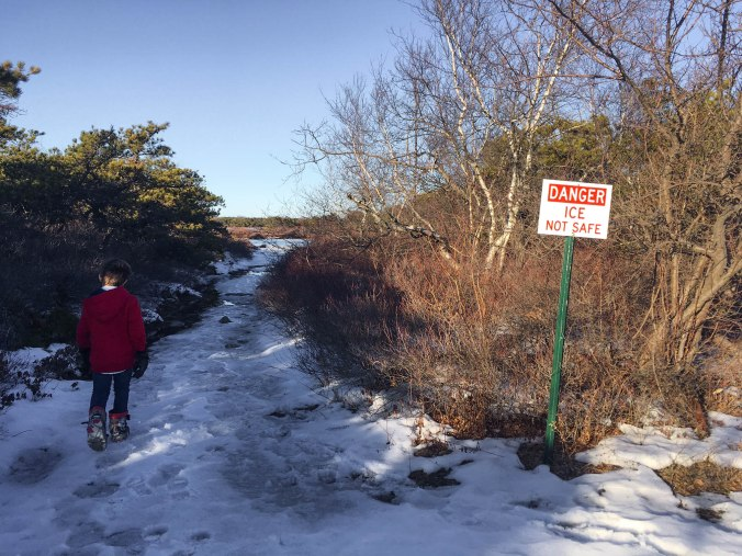 christmas-hiking-in-new-york-minnewaska-state-park-sams-point-11