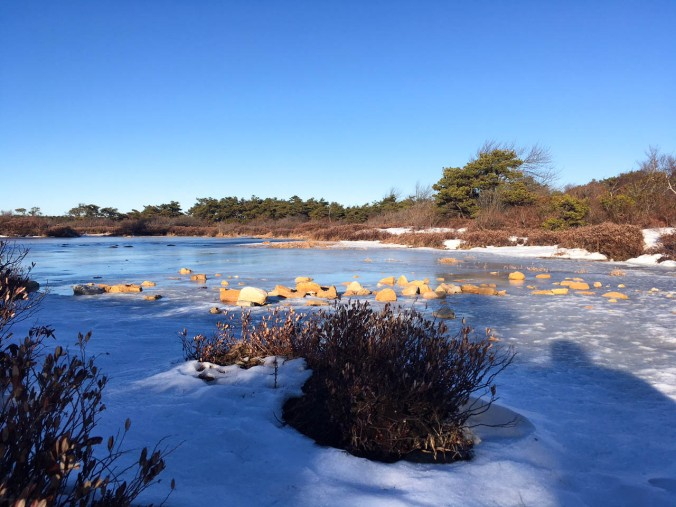 christmas-hiking-in-new-york-minnewaska-state-park-sams-point-12