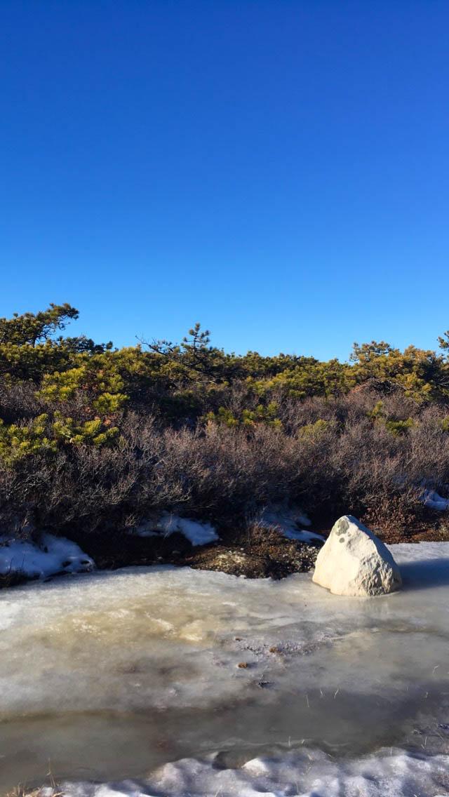 christmas-hiking-in-new-york-minnewaska-state-park-sams-point-22