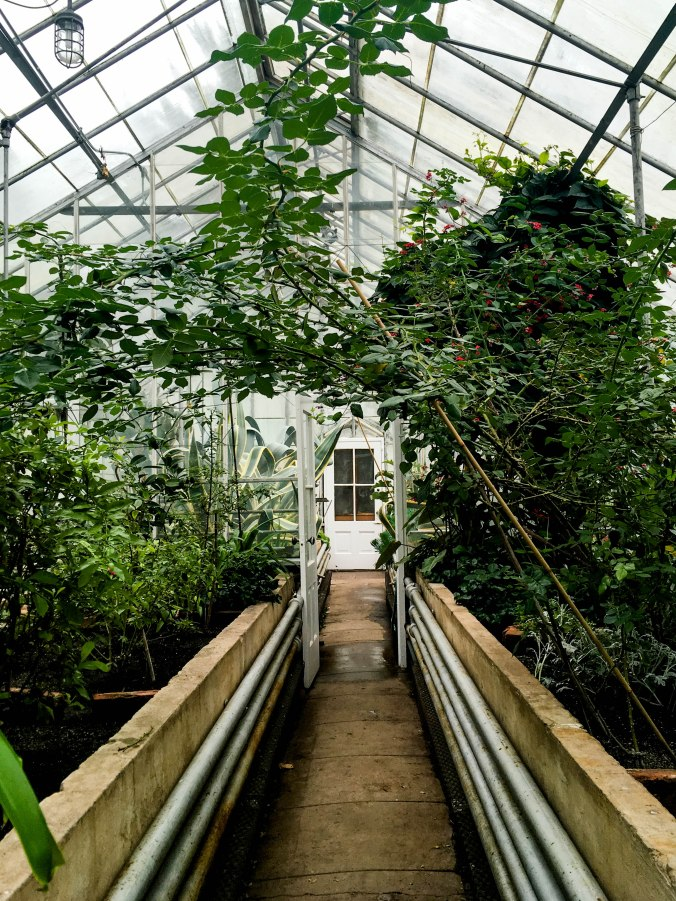 conservatory-thomas-edison-national-history-park-laboratory-and-home-new-jersey-8