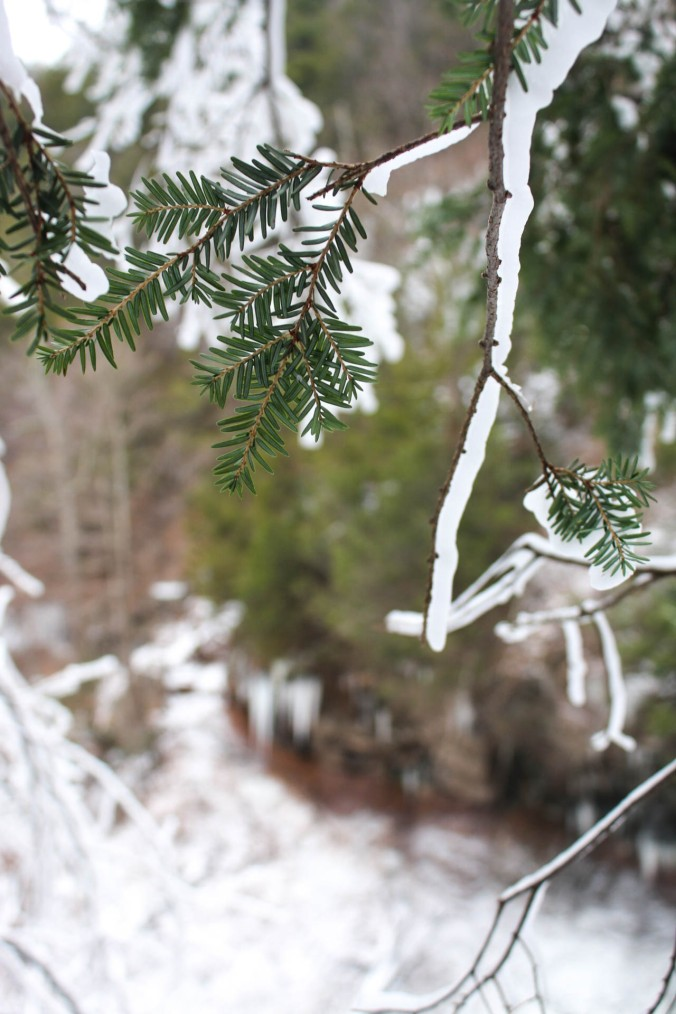 winter-ny-hiking-and-ice-climbing-in-the-catskills-kaaterskill-falls-15